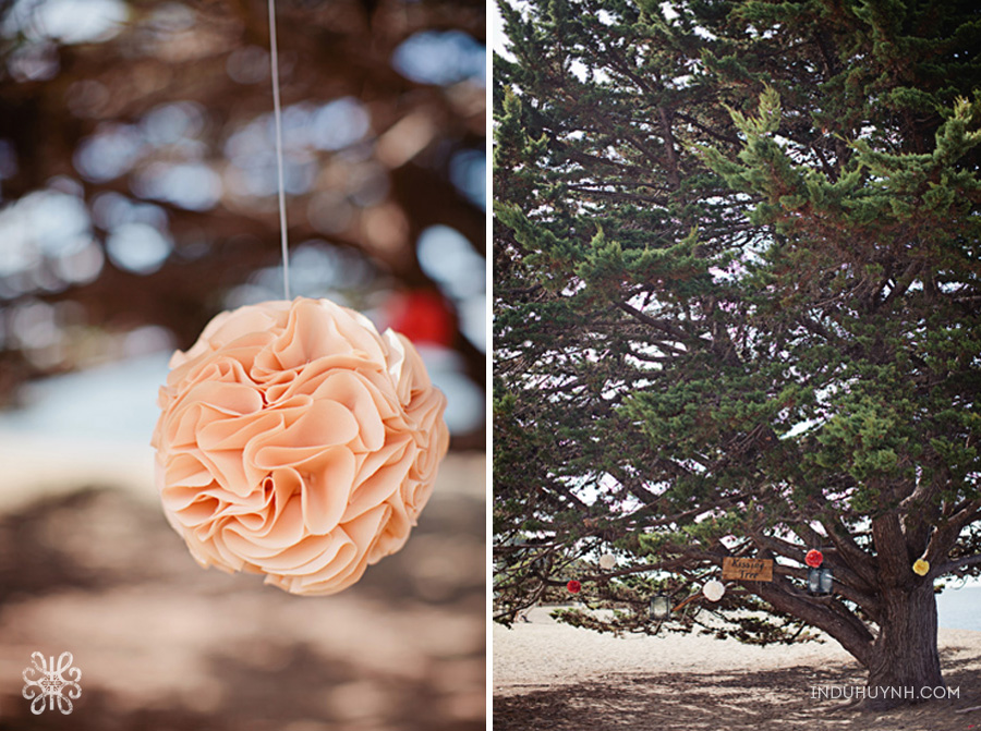 009intimate_beach_ wedding_Crown_Memorial_Beach_Oakland_California_Indu_Huynh_Photography