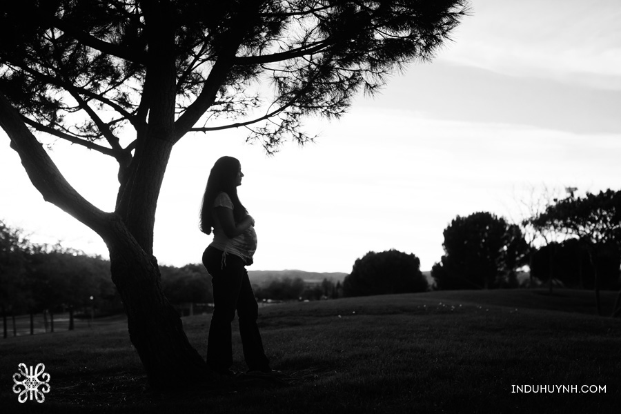 013Lifestyle-Maternity-Family-session-in-dublin-Indu-Huynh-Photography