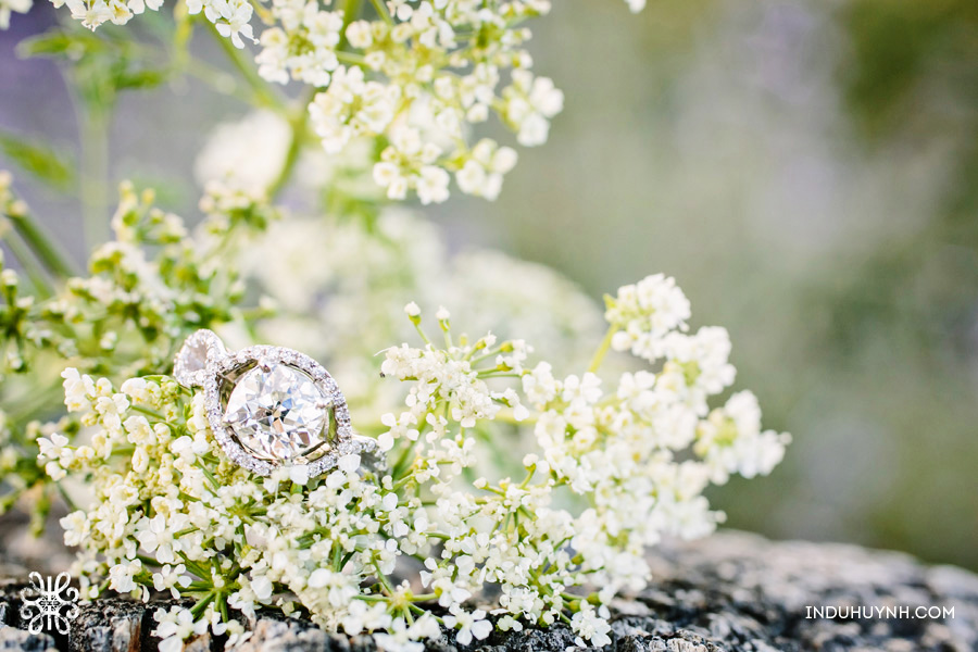 018M&R- Engagement- Indu-Huynh-Photography