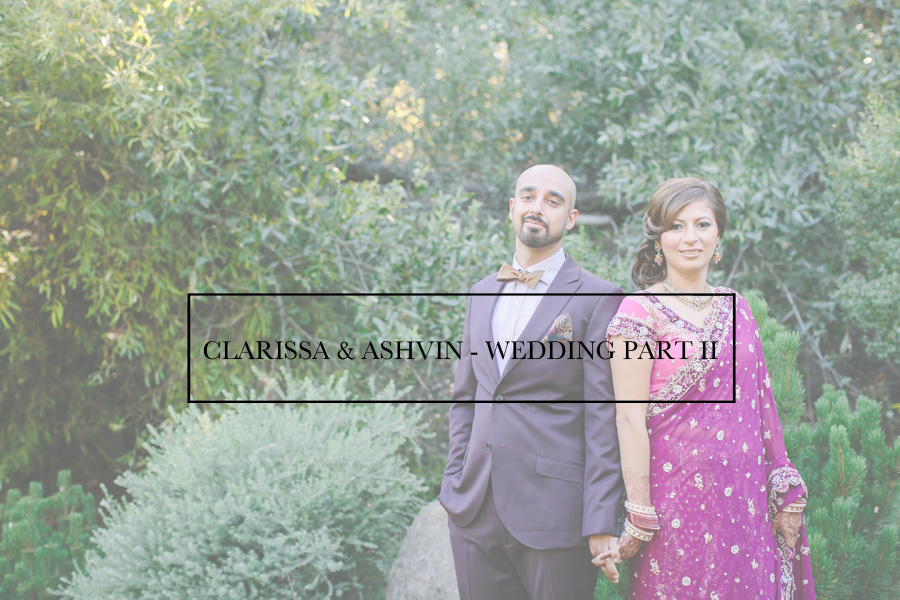 000C&A-Wedding-Blog2-Indu-Huynh-Photography