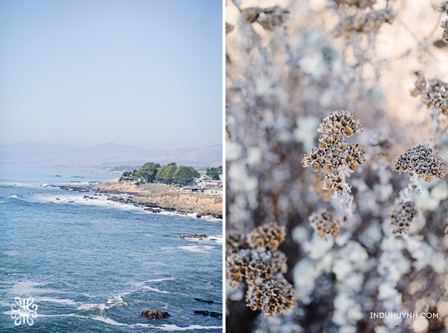 014C&H-Cambria-beach-Engagement-Indu-Huynh-Photography