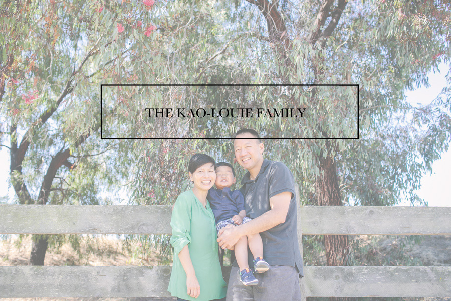 000Kao-Louie-Family-Session-Indu-Huynh-Photography