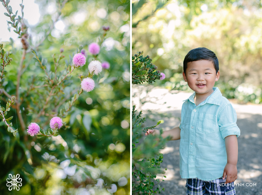 006Kao-Louie-Family-Session-Indu-Huynh-Photography