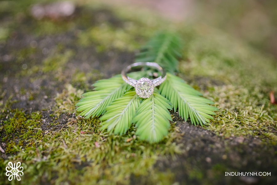 015N&R-Saratoga-Engagement-Indu-Huynh-Photography